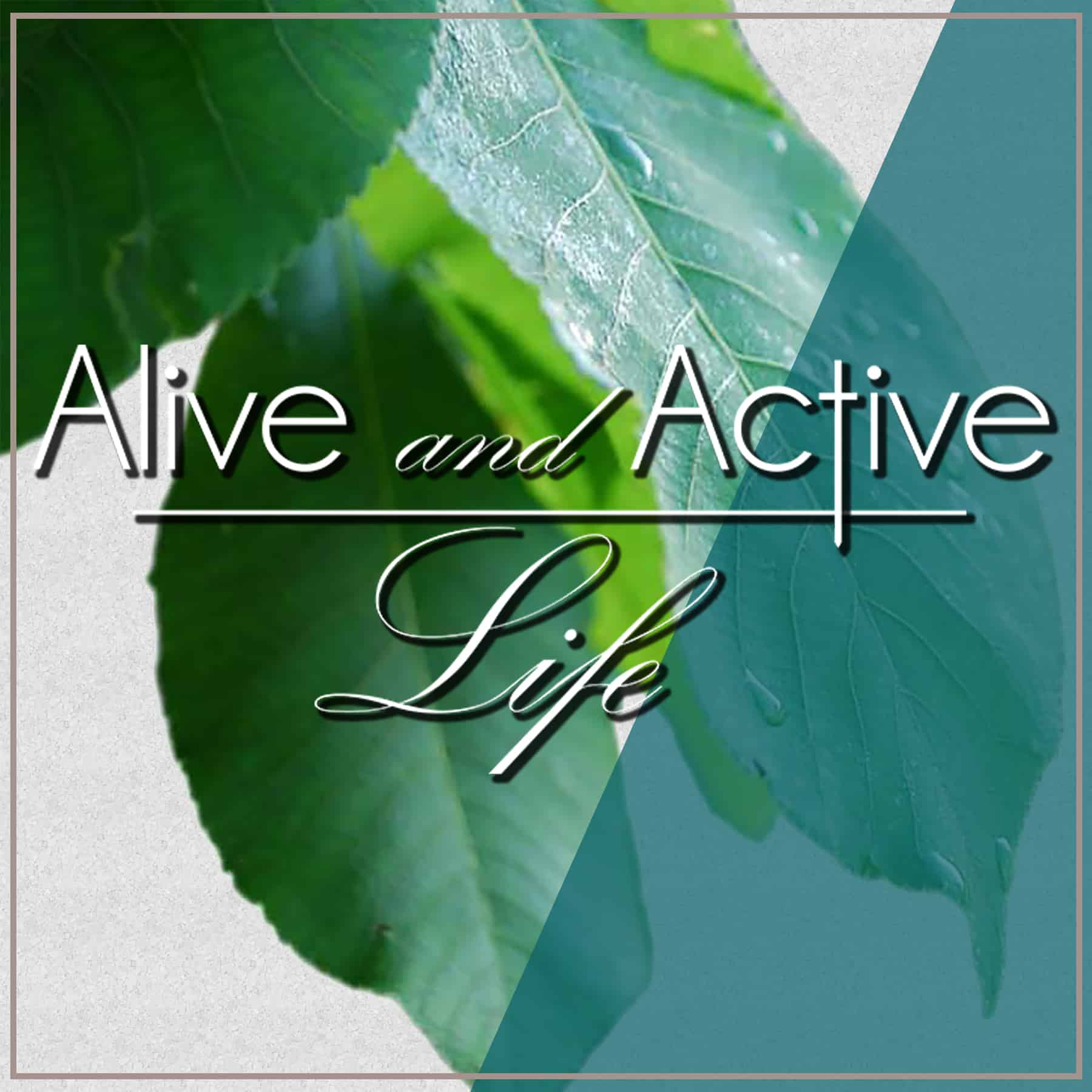 Alive and Active Life